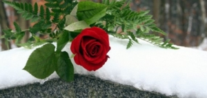 Tribute Memorial