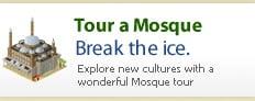 Visit a Mosque?