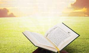 quran_collection