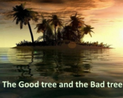 The-Believer-is-Like-a-Good-Tree