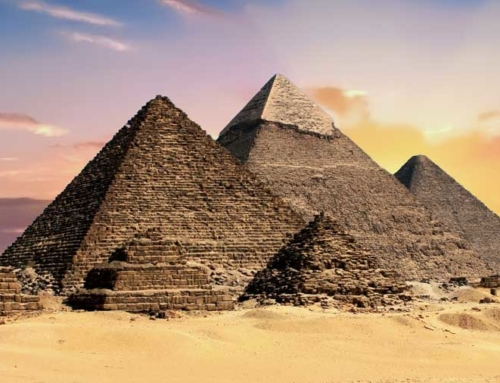 The Wife of Pharaoh