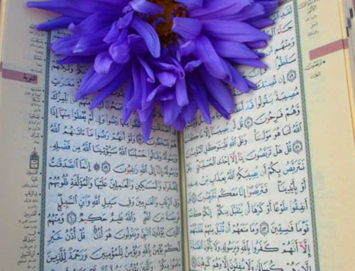 Six Uplifting Verses from the Quran