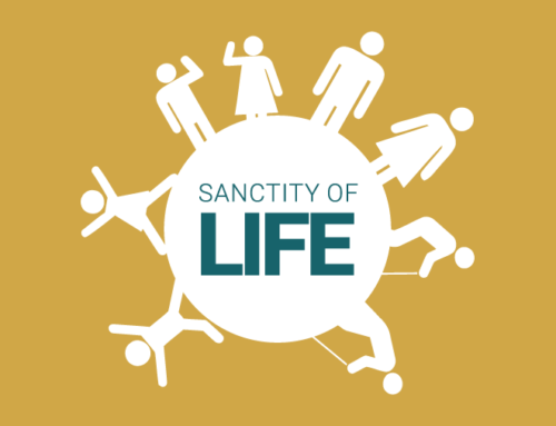 Sanctity of Life Infographic