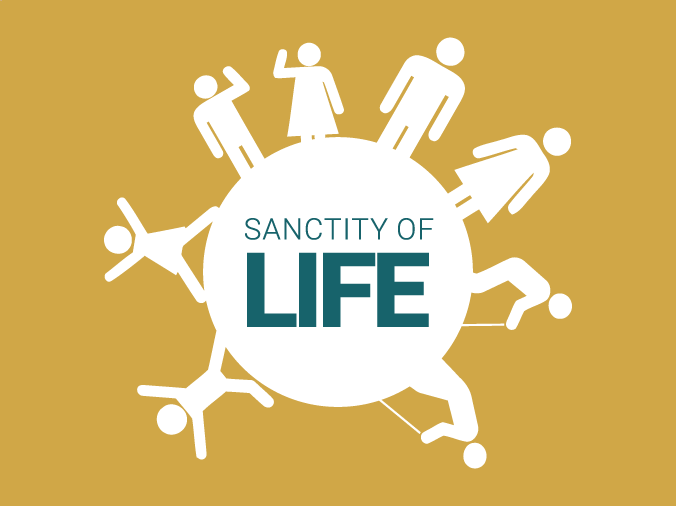 Sanctity of Life Infographic