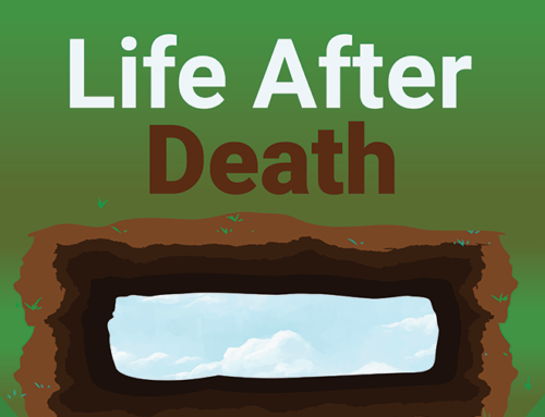 Life After Death Infographic